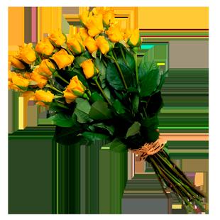 flowers1-1-ej-harrison-industries-trash-hauler